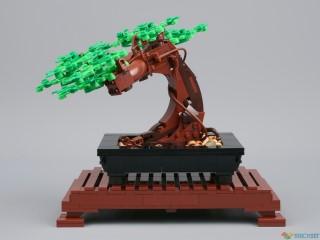 Review: 10281 Bonsai Tree