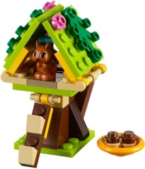 Squirrel's Tree House