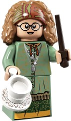 Professor Sybill Trelawney